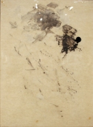 Detritus (Palette 18)